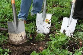 shovels in garden