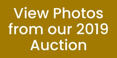 The Art of Celebration 2019 Auction Photo Album