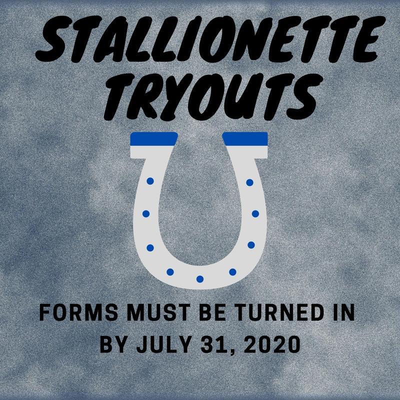 stallionette tryouts