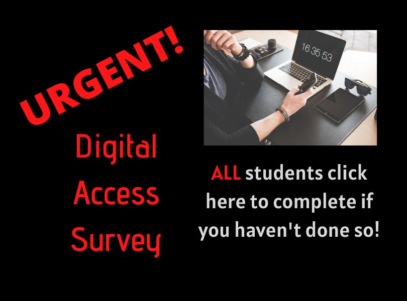 Digital Access Survey