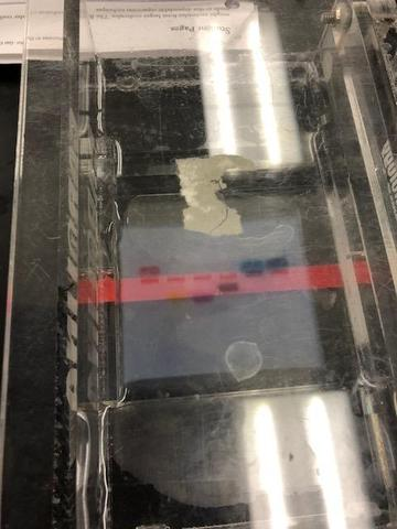 Electrophoresis results in biotech lab