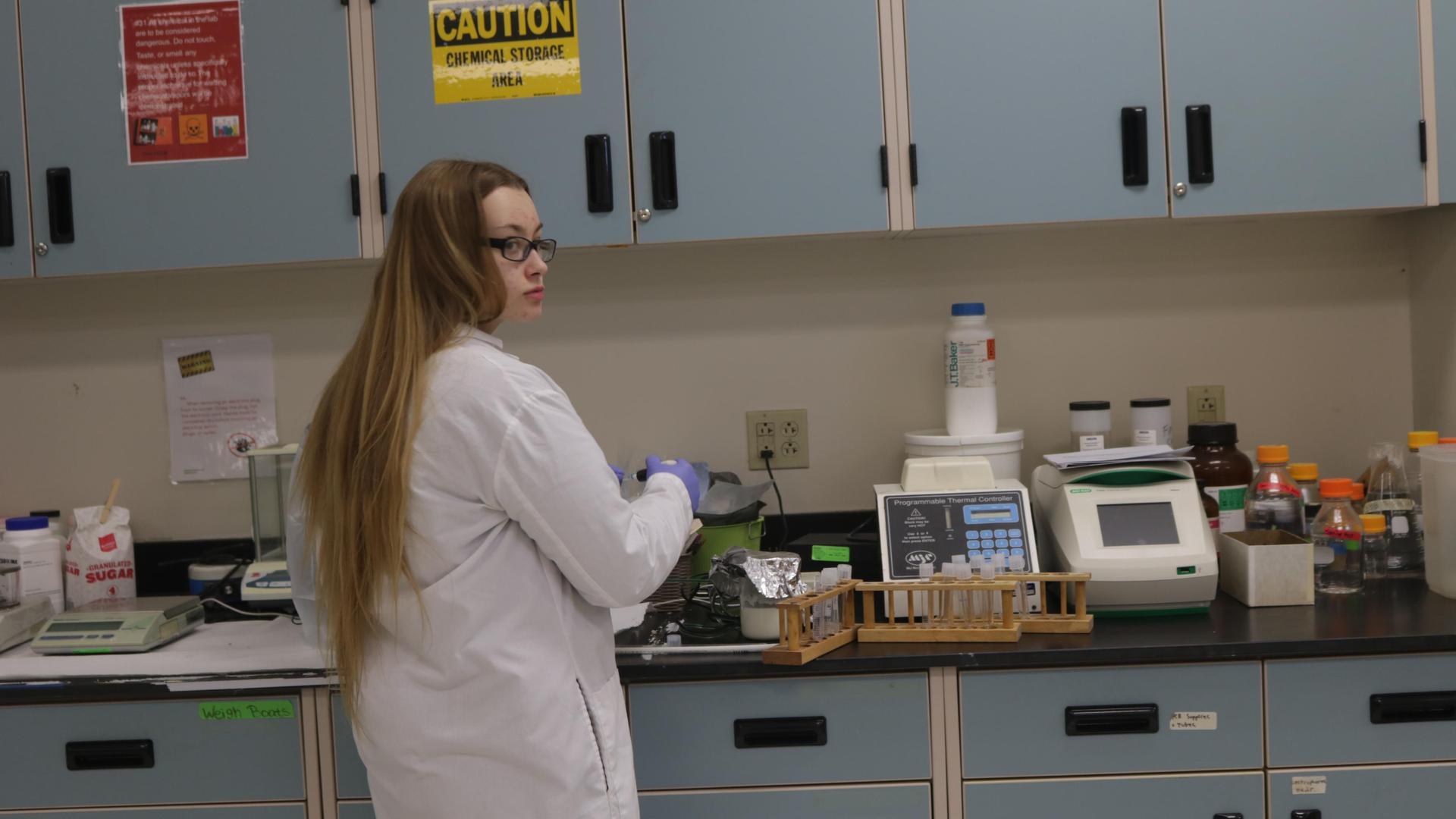 Student doing lab work