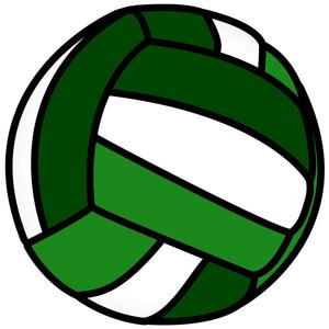 dmms web color volleyball copy.jpg
