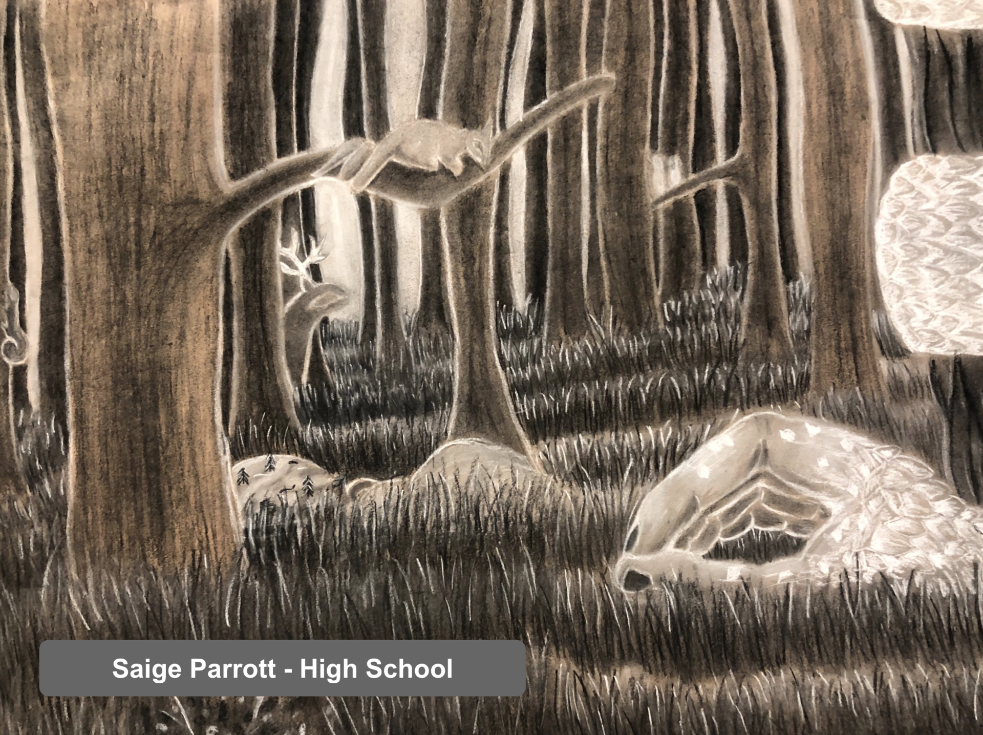 Saige Parrott - Art Project - High School