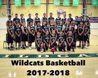 Wildcat Basketball 17-18