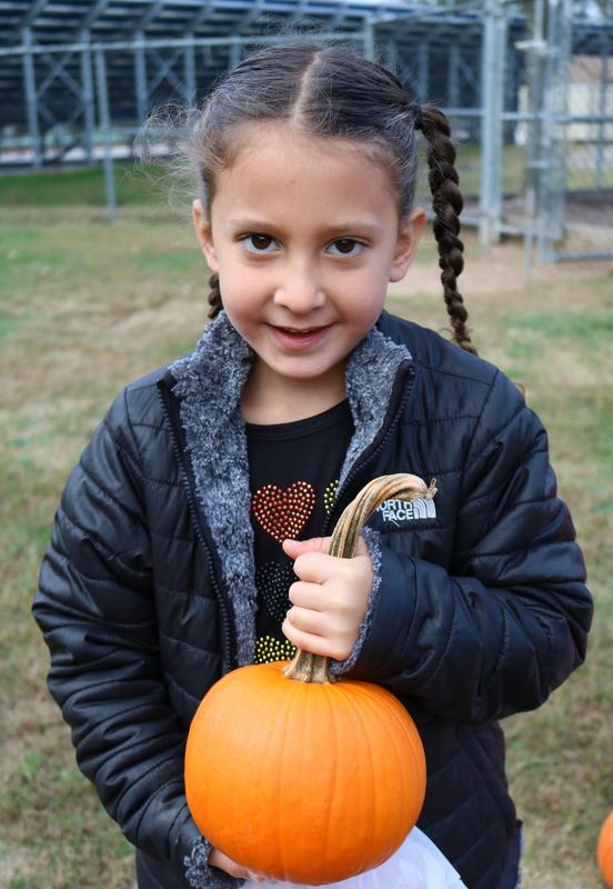 Photo of kindergartner at Lincoln School holding pumpkin at annual Pumpkin Patch.