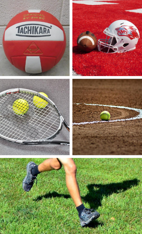 picture of sports