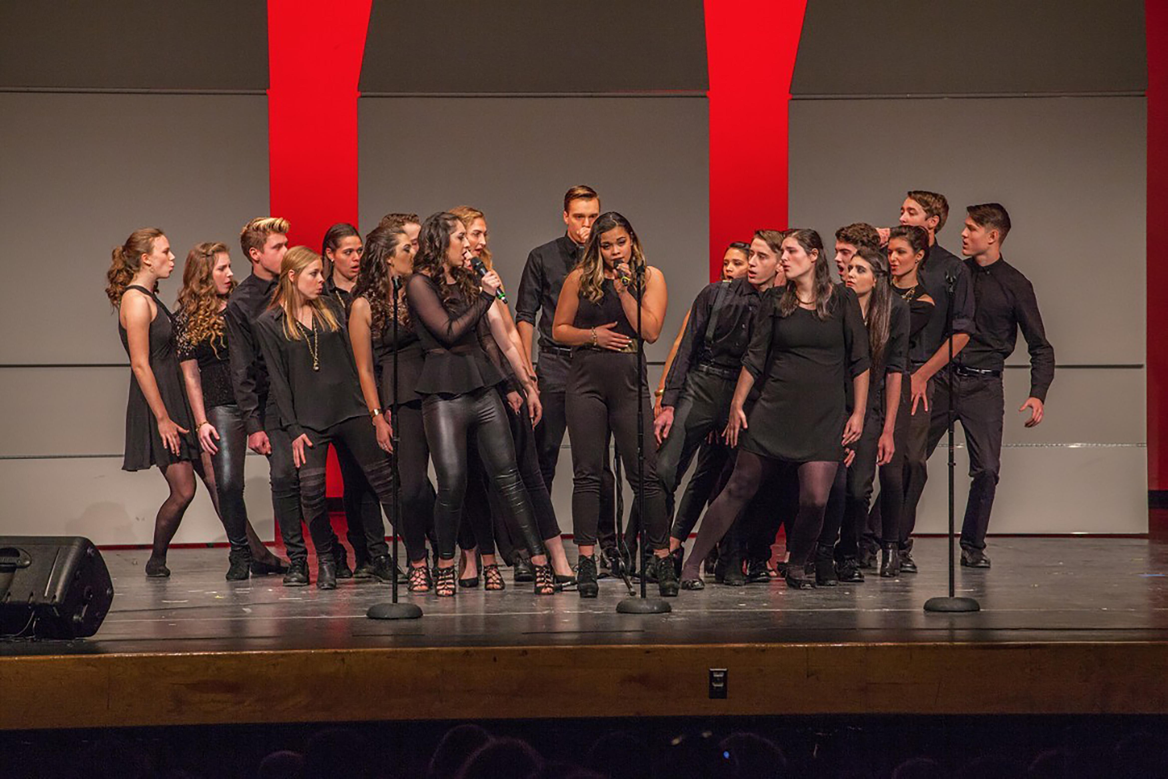 Trebels A Cappella group performing at national competition