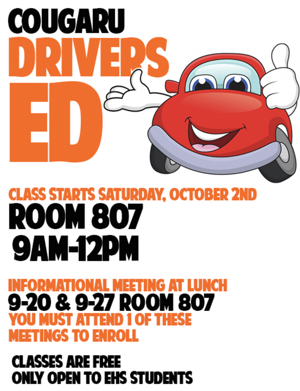 Drivers Ed Flyer