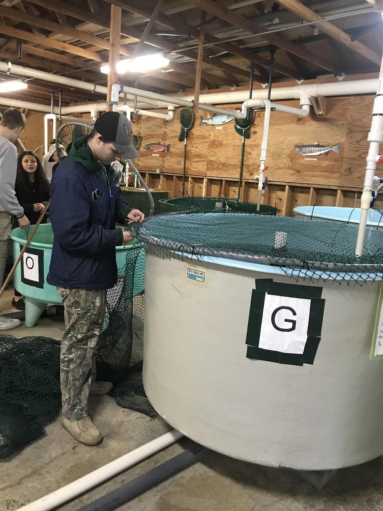 Student at fish hatchery