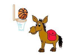 Donkey Basketball Featured Photo