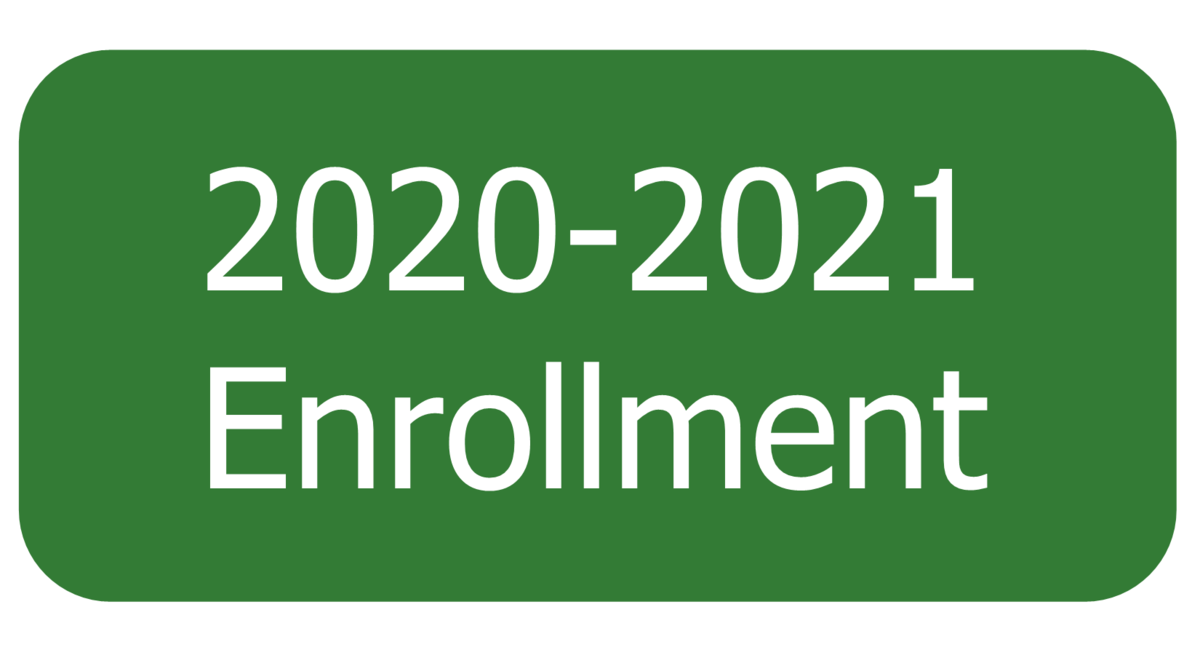 2020-2021 Button