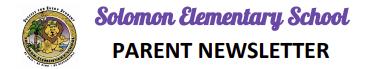 Newsletter Header Decoration