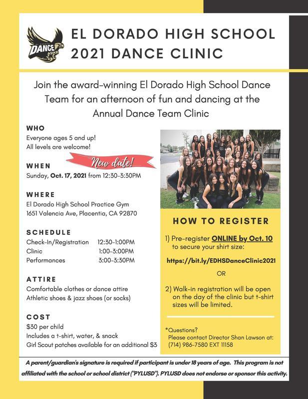 Dance Clinic Flier
