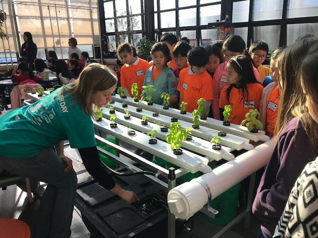Instructor showing students how to use hydroponic table