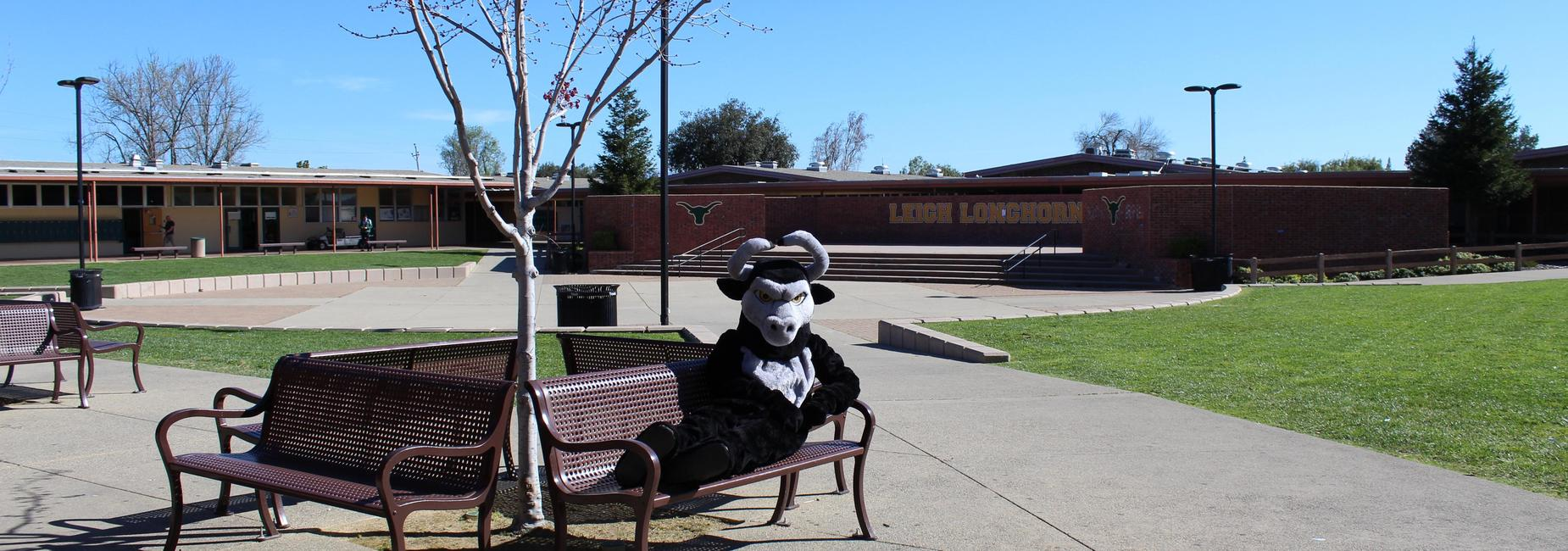 Our mascot - Leighroy - lounging on a bench