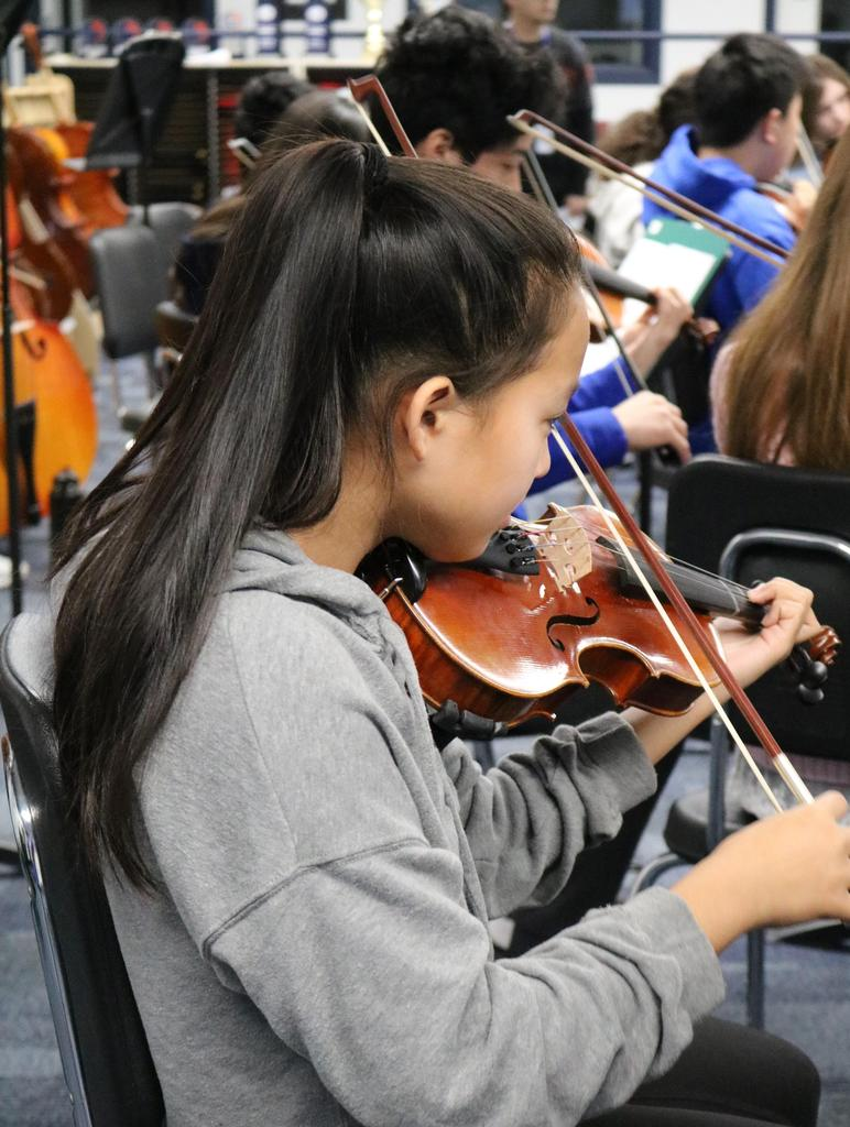 Photo of high school and intermediate school student orchestra musicians during District Music Day