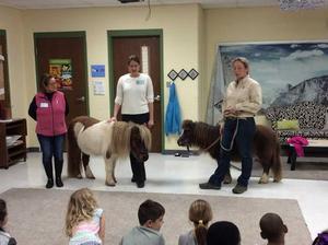 1st grade horse visit4.jpg