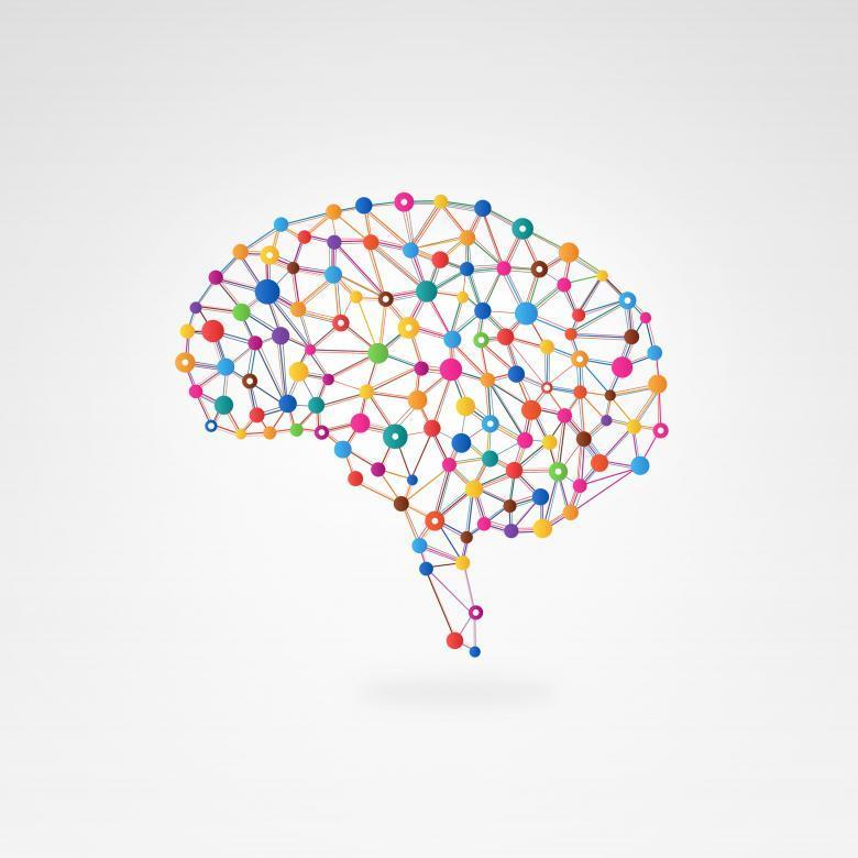 Psychology Photo Brain