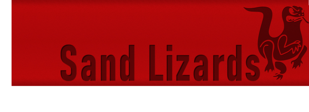 Sand Lizards
