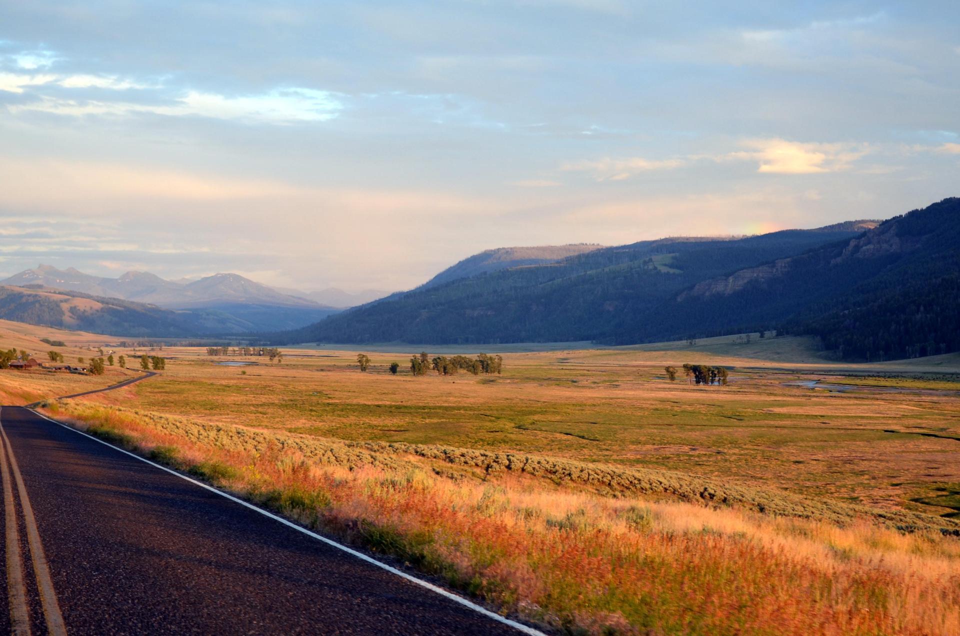 Lamar Valley at Yellowstone National Park